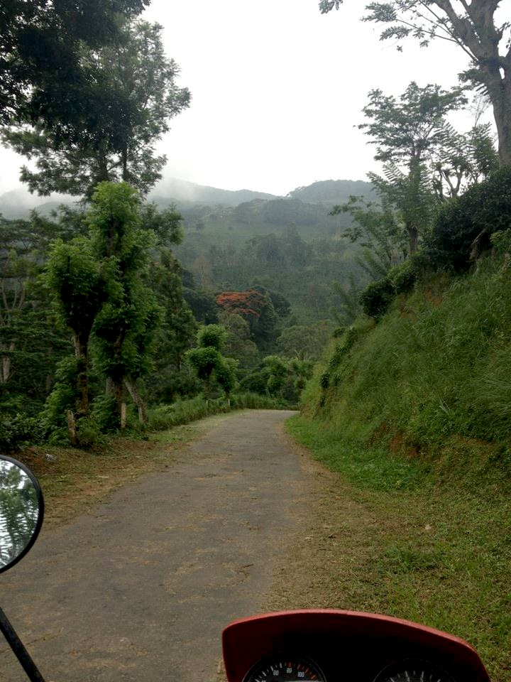 Stumbled across this gem of a road (A17 in Sri Lanka) by chance. From looking at the map I had no idea just how epic it would be, presumed it was just a normal 'road'. Turned out to be a single track lane that snaked on for over 90k's weaving through mountains, tiny villages, jungle, Buddhist shrines, waterfalls.. Proper Narnia'esq stuff. Shot a bunch of 35mm film here. We'll post 'em on  makeyourbones.com