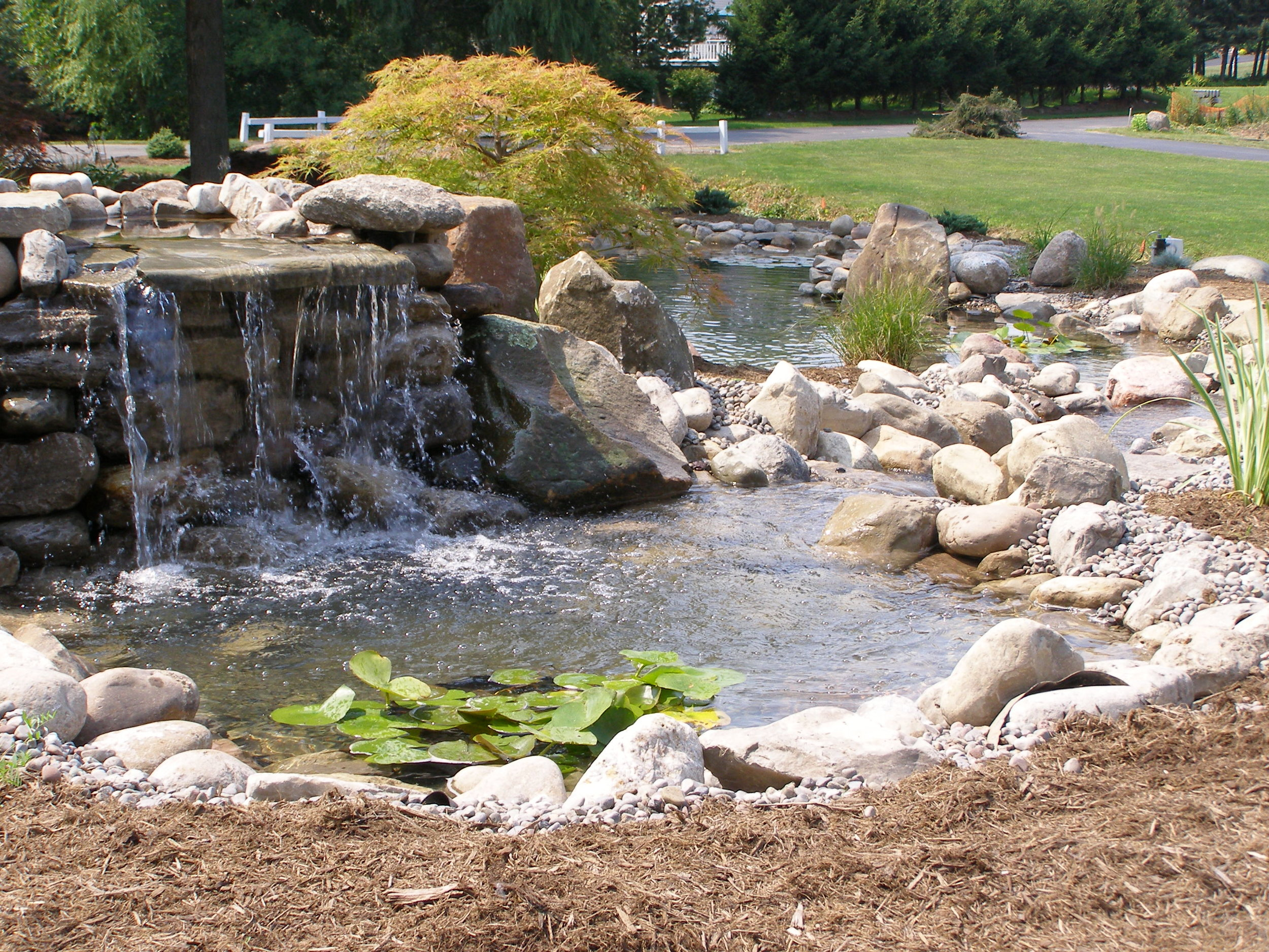 waterfall pond landscape design plantings