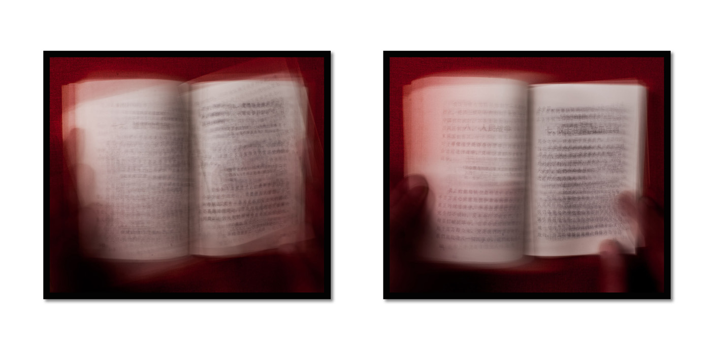 Little red book (2013)