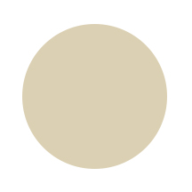 Paper Color Circles  ochre.jpg