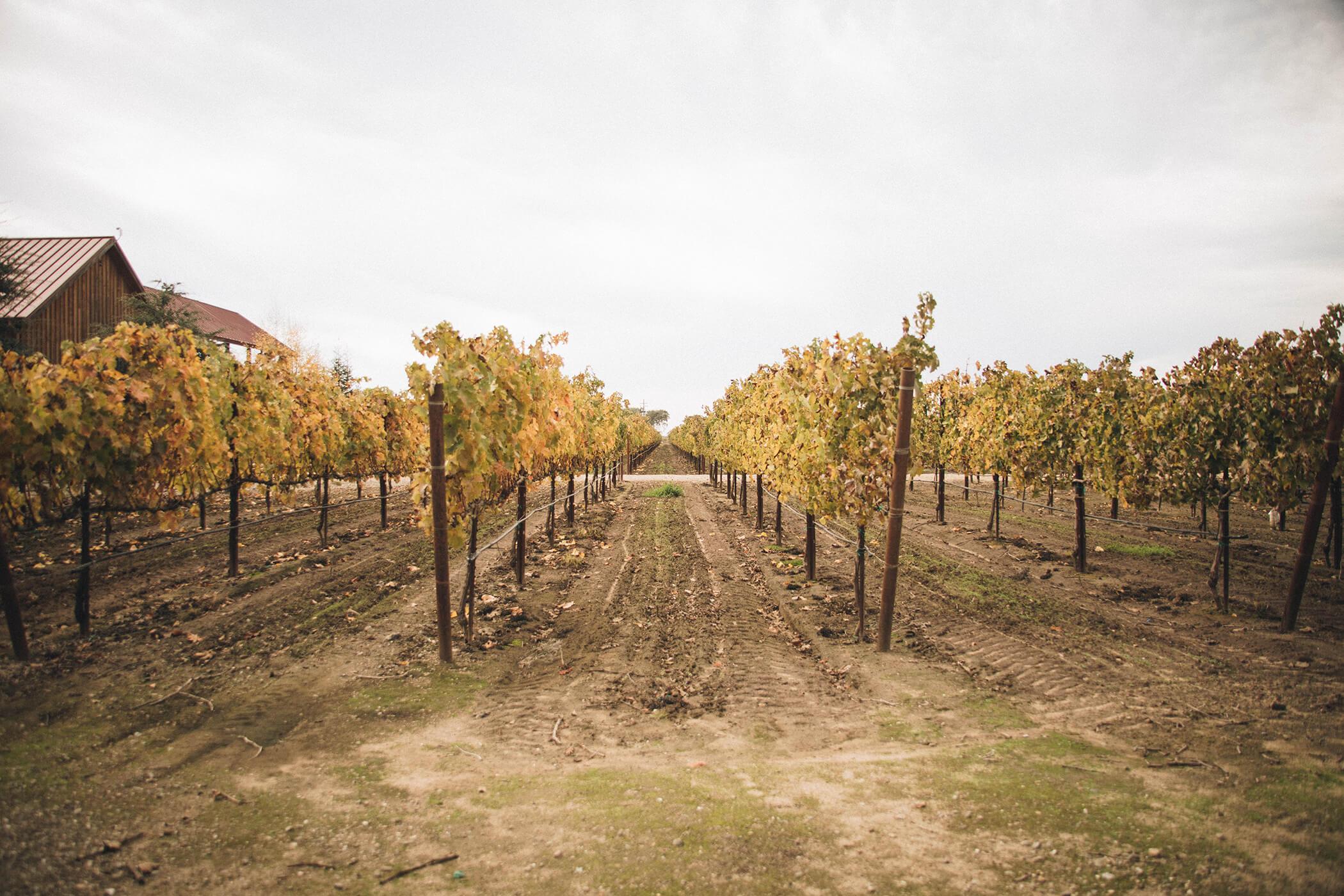 oak-farm-1.jpg