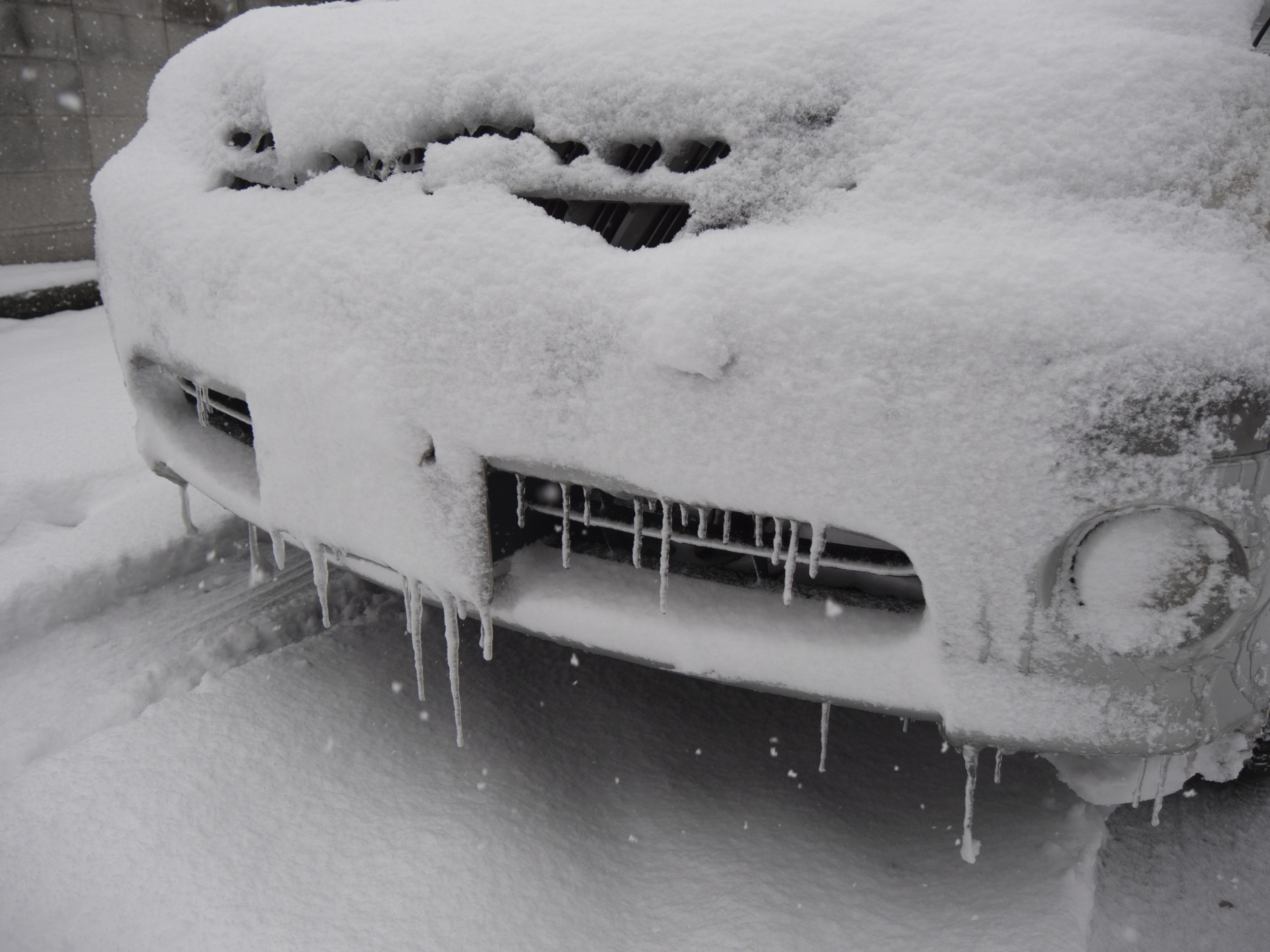 Icicles on cars! 車につらら!