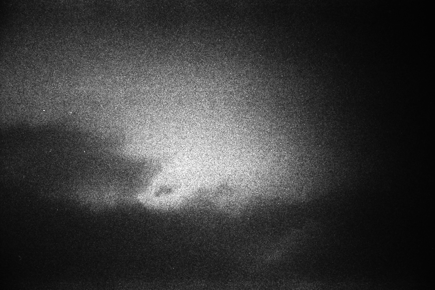 UP, GELATIN SILVER PRINT ON ILFORD PAPER, 2013