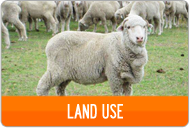 LAND-USE-BUTTON.png
