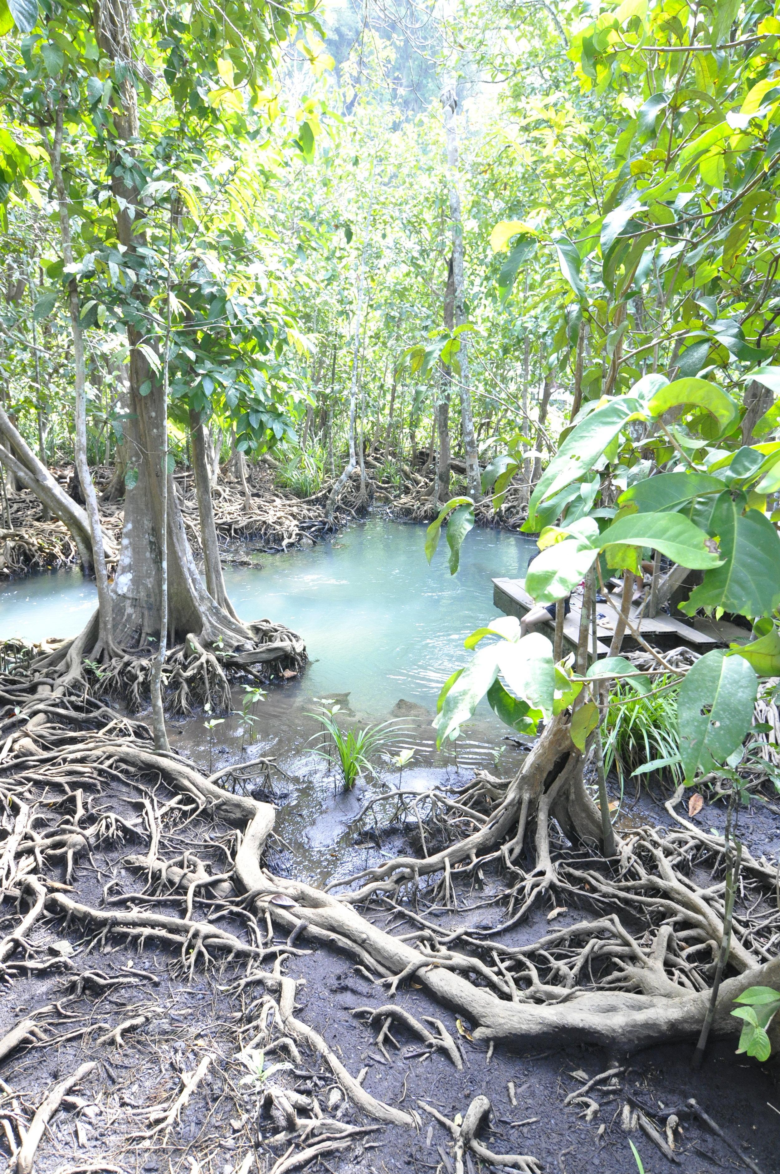 What to do in Krabi, Thailand | coupleinthekitchen.com