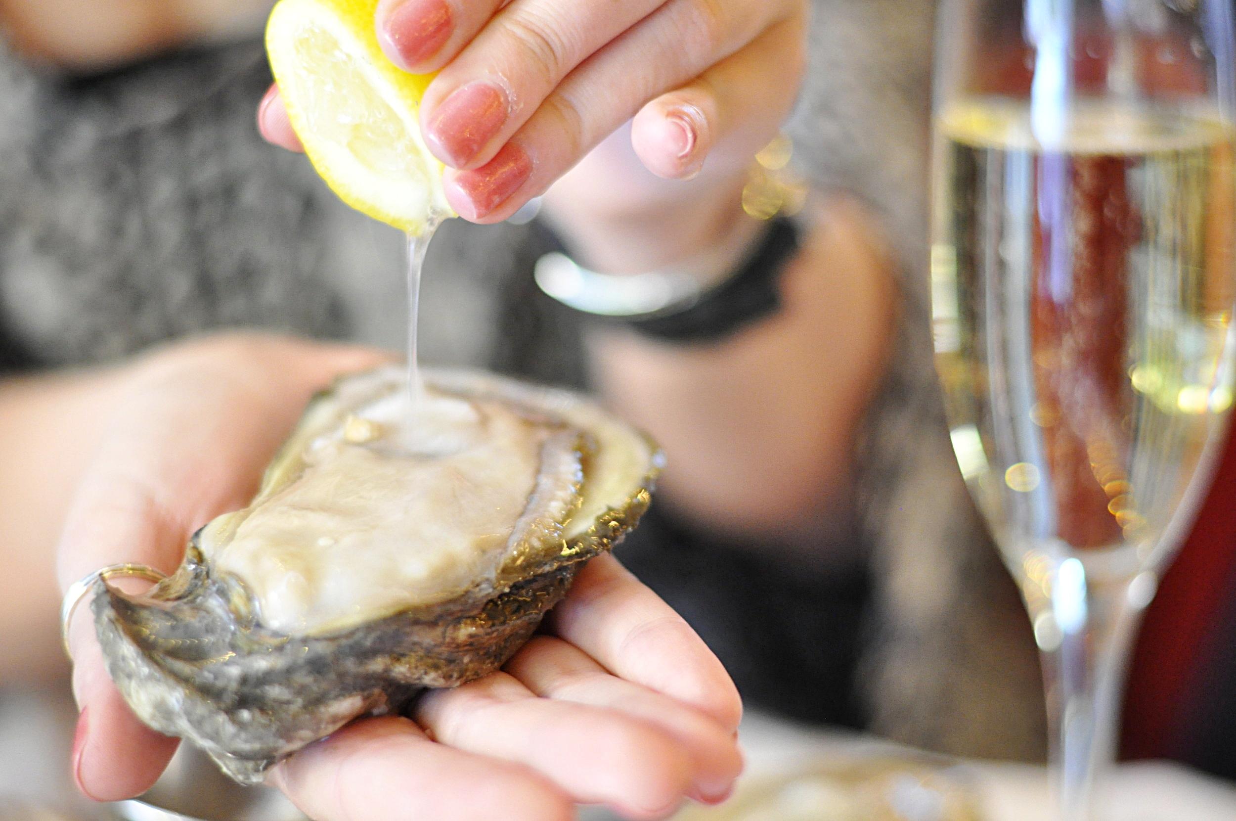 Best Food in New Orleans   coupleinthekitchen.com