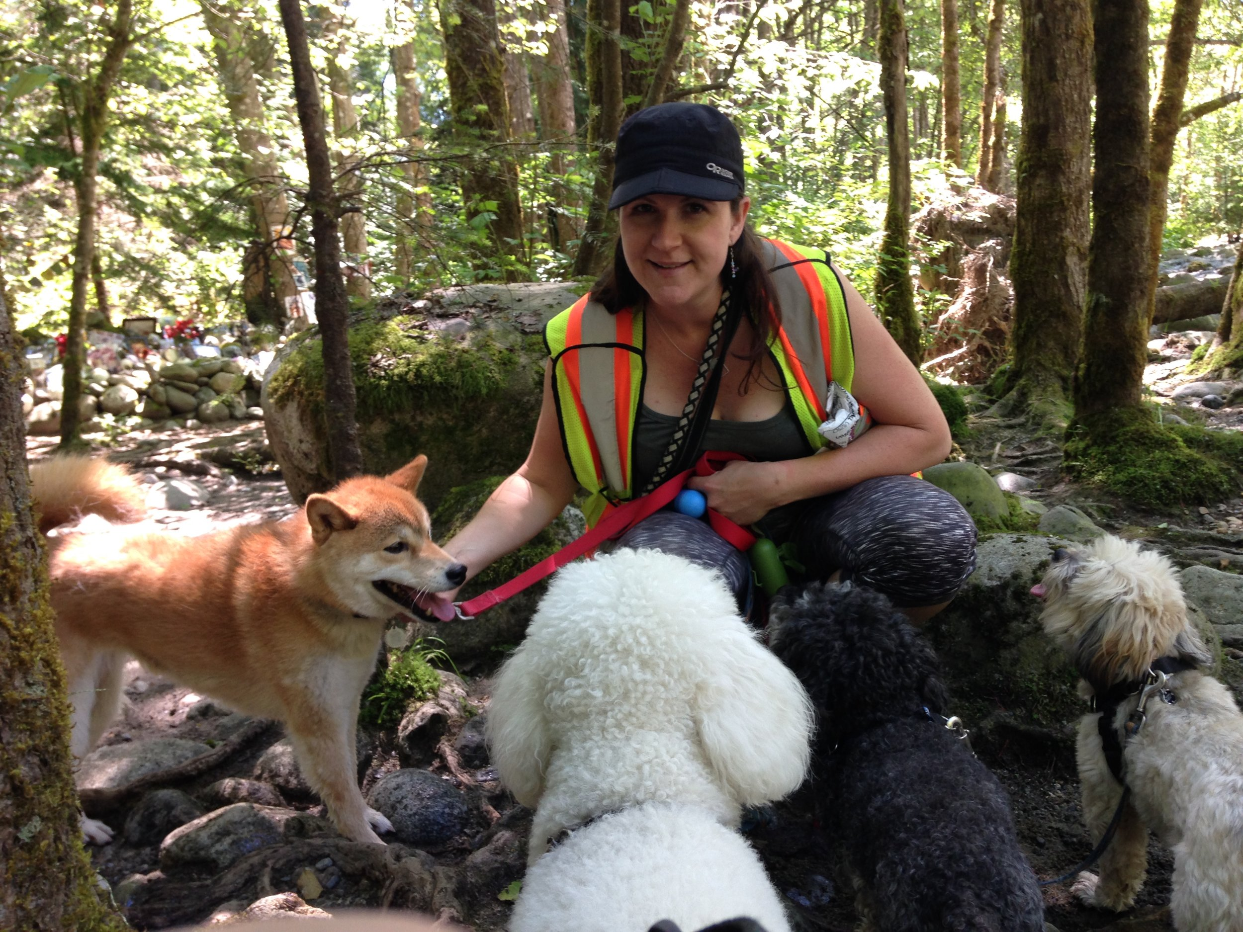 Hello, my name is Alisha Gooch.    I am an assistant in the classes and look forward to working with all the dogs and their people.    I was lucky to grow up in Central British Columbia as well as Bowen Island and more recently the North Shore. From my younger years to now I have always had a dog at my side to go on daily adventures or just to sit and cuddle. I have also had cats and a variety of other critters throughout my life. (sheep, chickens, bunnies, and birds just name a few)    My career with animals and their people has been varied over the years. I have worked in Pet retail stores, Pet groomer, Pet wholesale (making gourmet pet treats and prepared food) and finally as a dog walker. I currently work as a commercial dog walker for a North Shore based company as well as working for a few of my own clients.    I love being with the dogs!! Taking them on daily adventures and applying my training to their daily routine. My dogs love the work and have a look of pride when showered with praise and rewarded with treats.    I live in North Vancouver with Graham and our two lovely cats. Beans and Polar.    I have my Early Child Care certificate (Capilano University) and worked for seven years with young children before returning to working with dogs. I love working with children and their dogs. Both require patients, direction, leadership and love.    I look forward to meeting everyone in the classes.