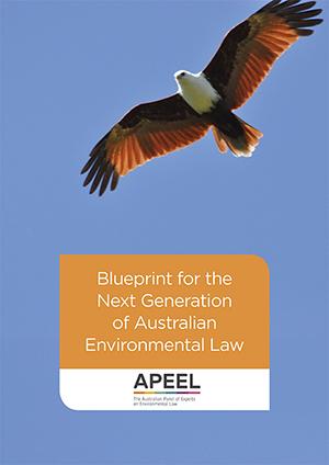 Blueprint cover (002).jpg