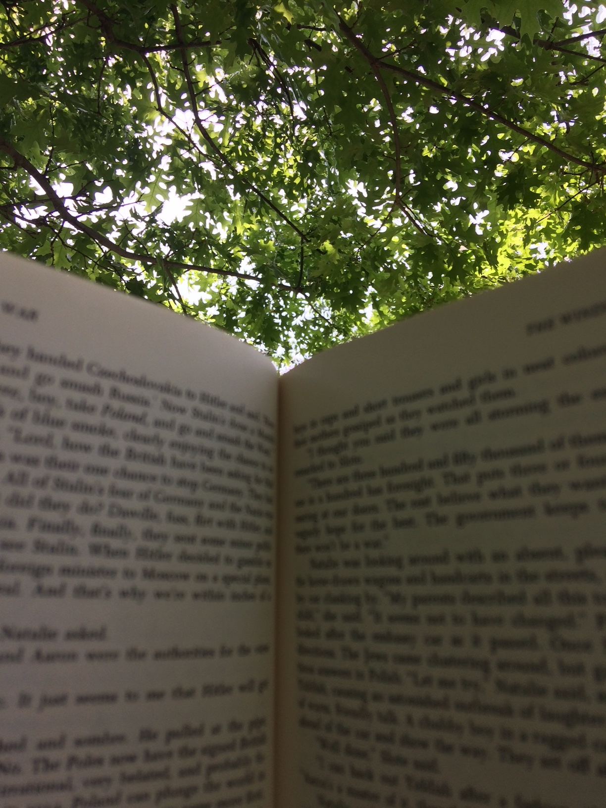 Making my way through The Winds of War on my hammock last weekend. A long book read outdoors=Heaven.