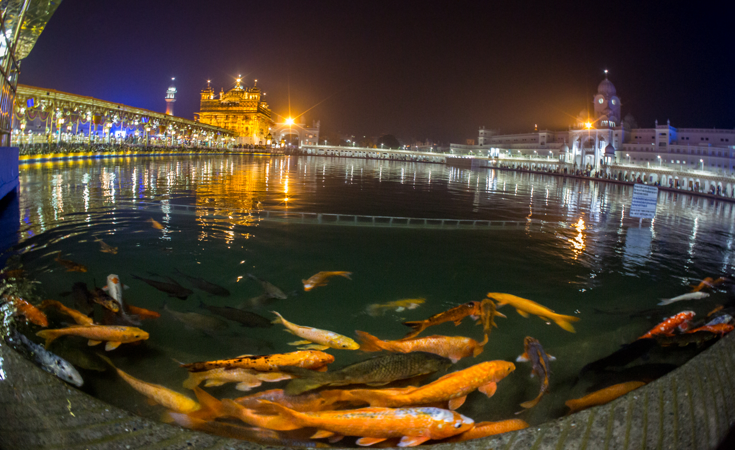 The lake surrounding the Golden Temple.