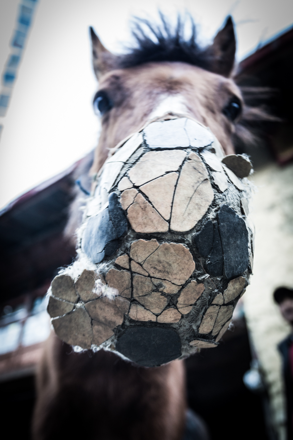 Villagers in Tsum Valley use old soccer balls  as horsefeeders.