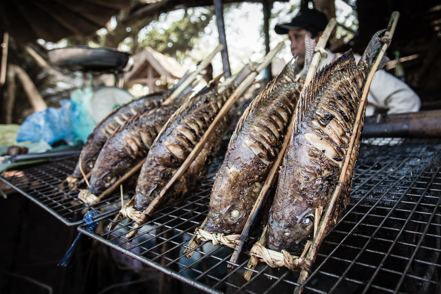 The catch of the day sold as street food in Laos.