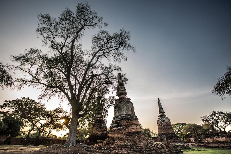 Stupas in the Wat Phra Si Sanphet complex.