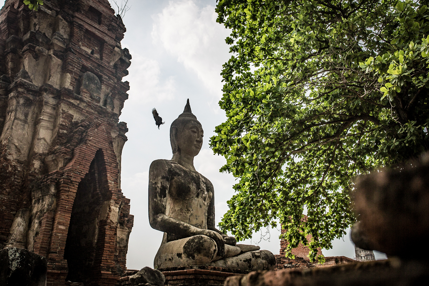 A statue of the Buddha at Wat Maha That, built during the 14th century.