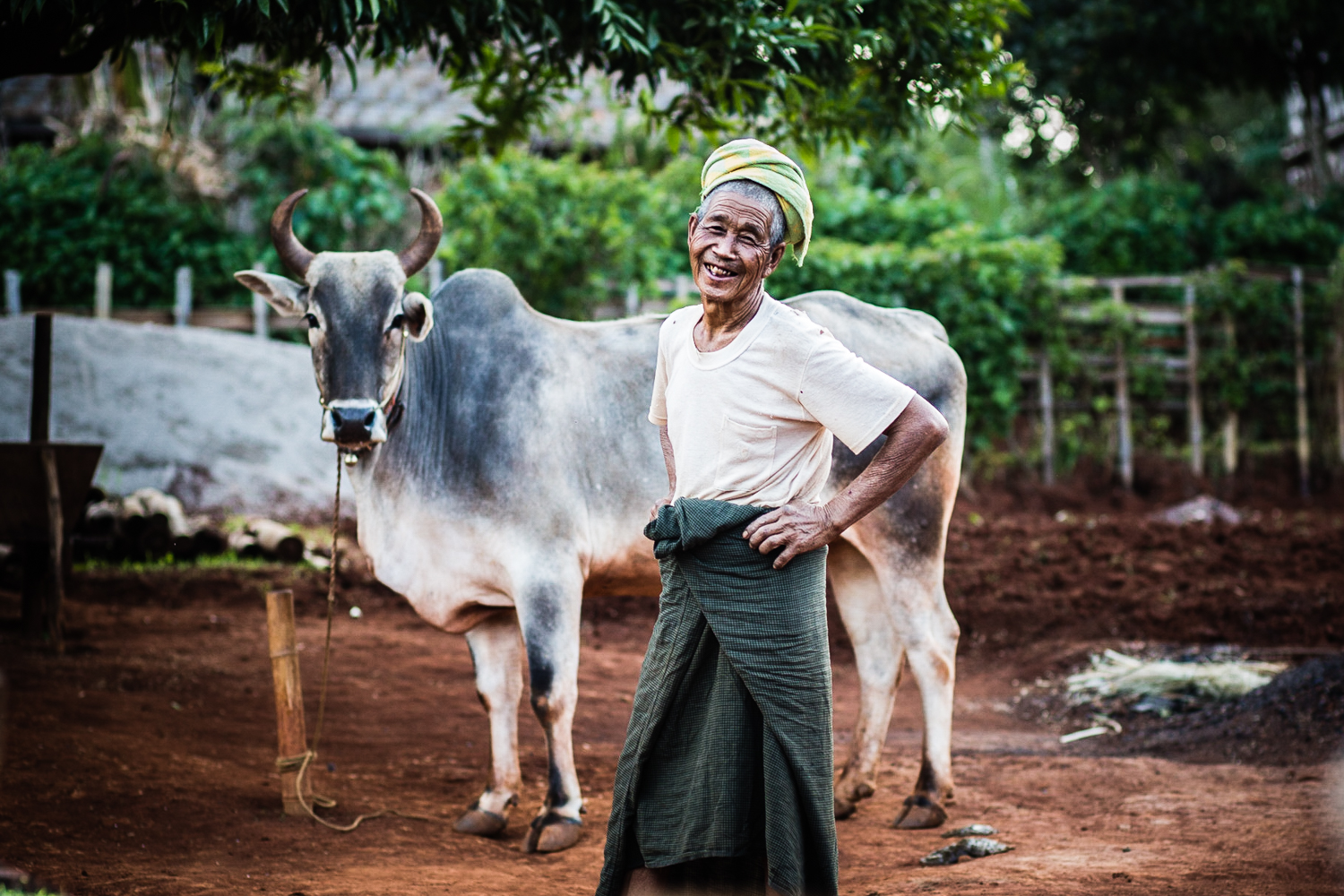 Most of the villagers in the area are subsistence farmer famers. Cows are used for labor in lieu of meat or milk.
