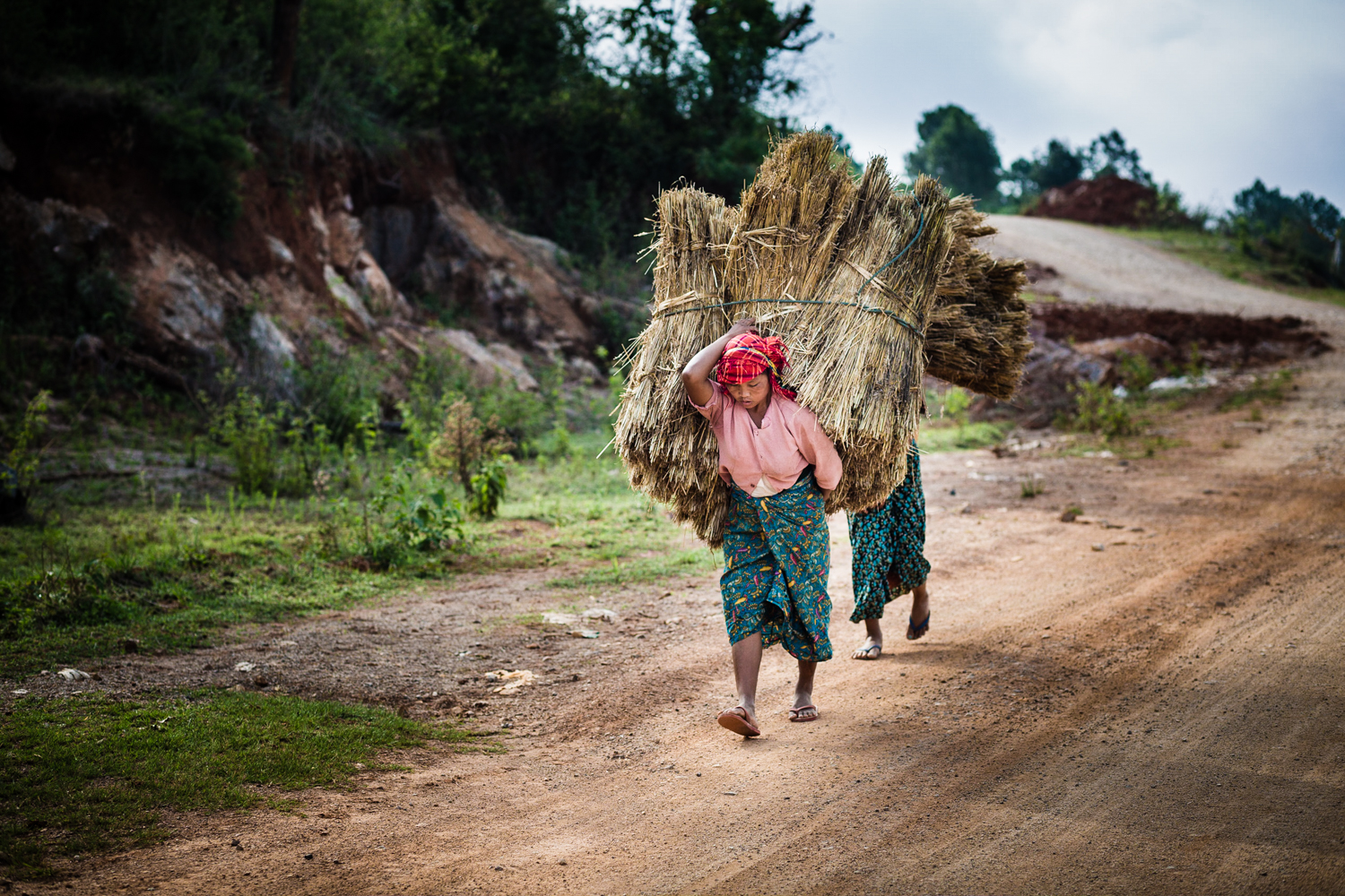 Women carrying transporting of hay near Htee Their village.
