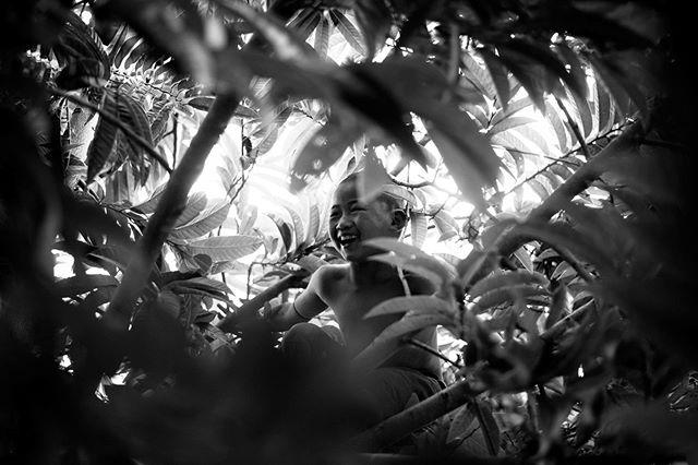 Photographer: Iñigo Echenique @allthesehumans Hsipaw, Burma (2017). #travel #allthesehumans #boy #jungle #asia #burma #myanmar