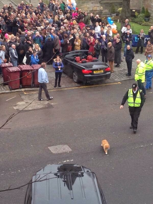 SIR HAMISH ANGRILY LEAVING THE SCENE OF THE STATUE'S INAUGURATION.