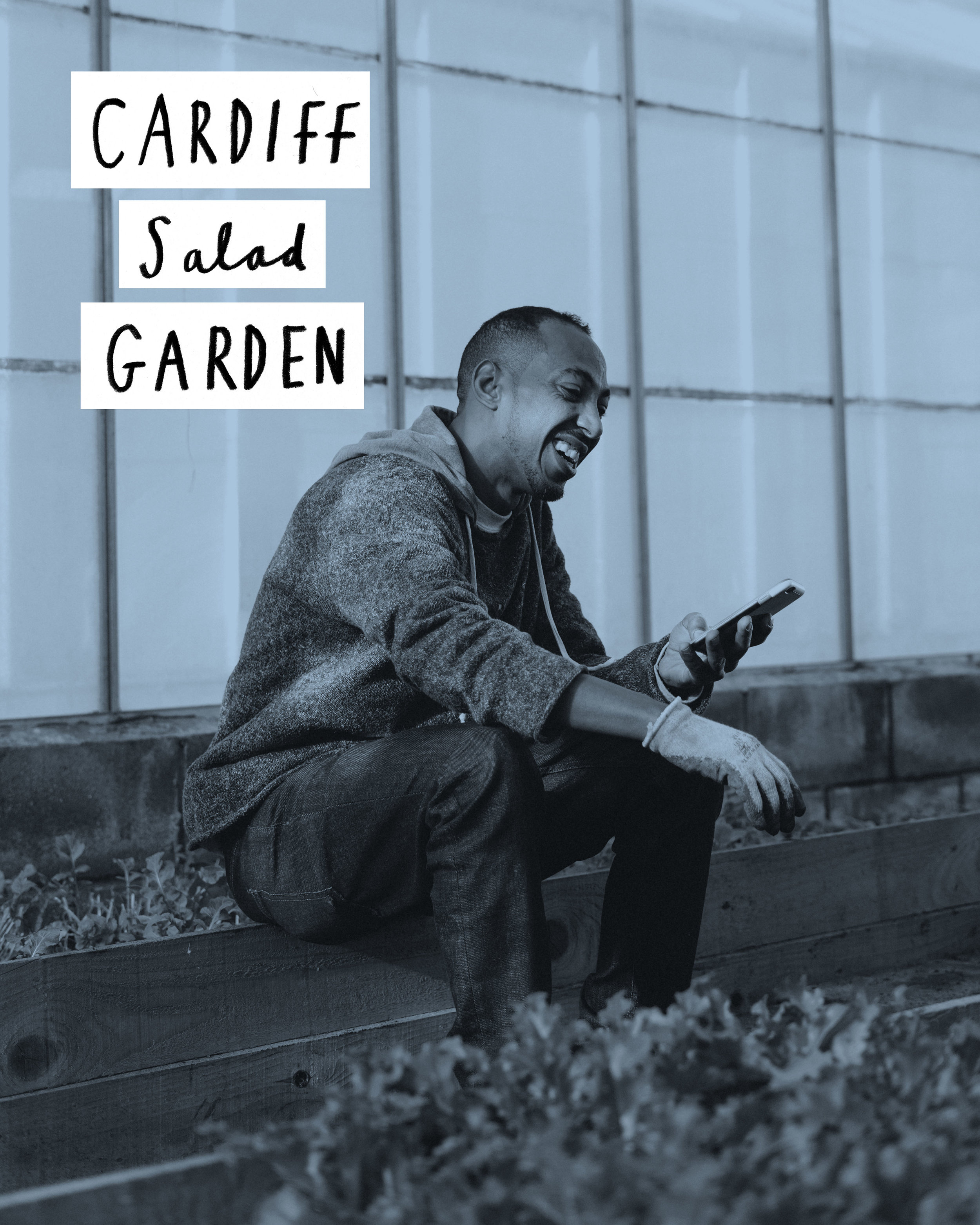 Salad Garden Cover Image.jpg