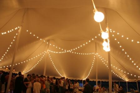 G50 String Lights