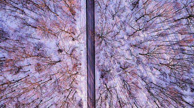 //017  #Drone #djiphantompro #dji #photography #aerialphotography #aerial #photos #snow #trees