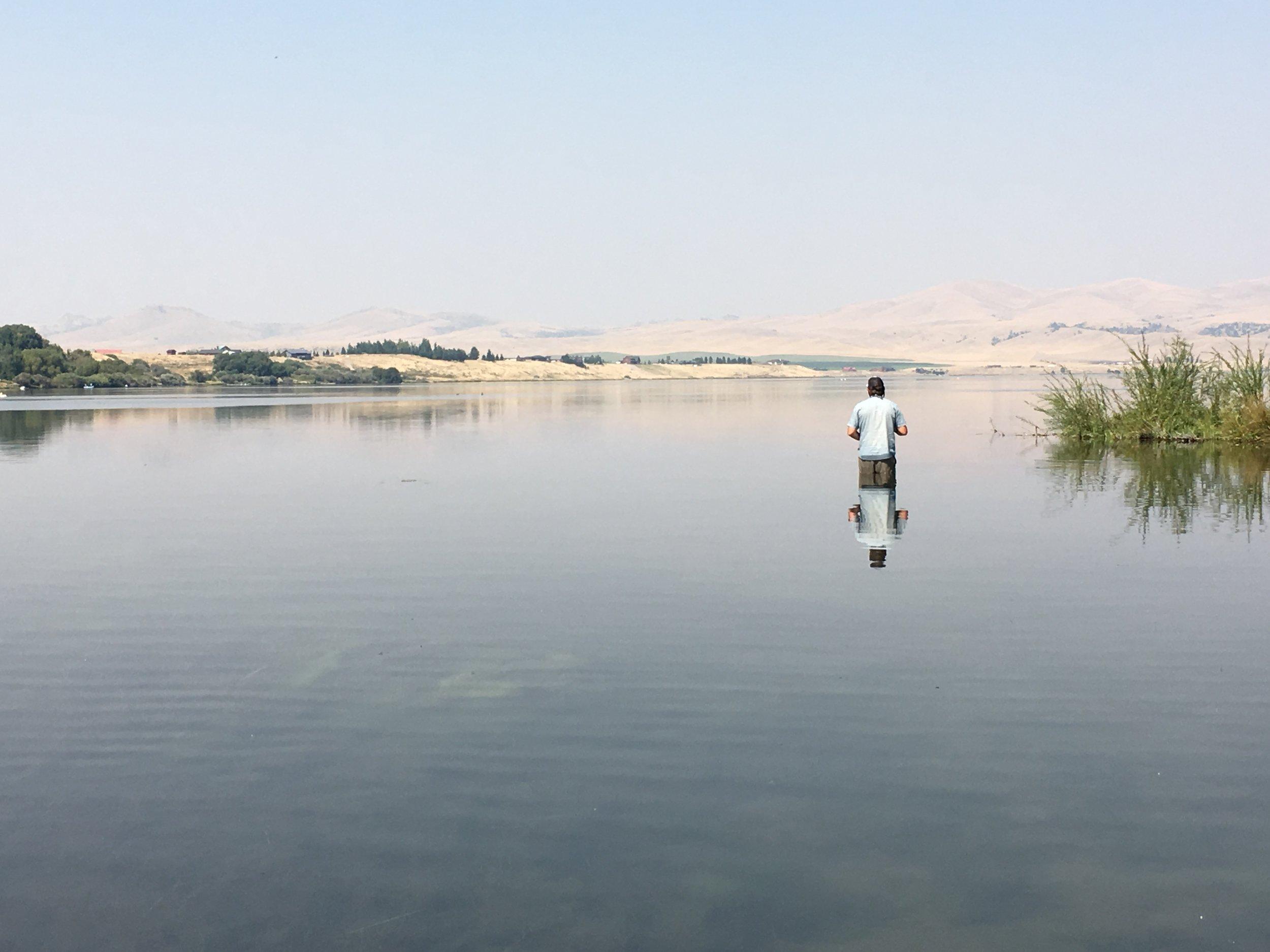 Stalking the big trout in Ennis Lake