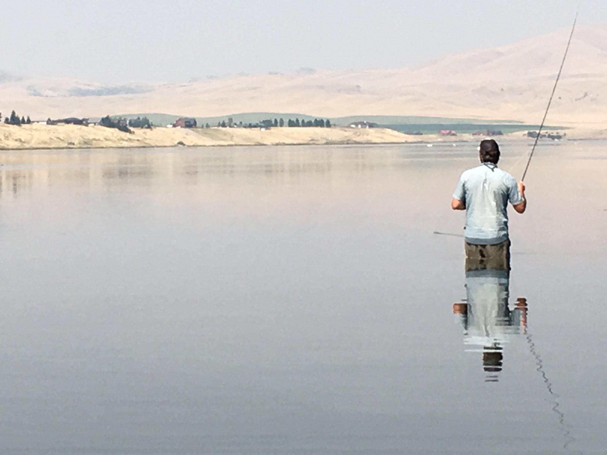 Dry Fly fishing Ennis Lake