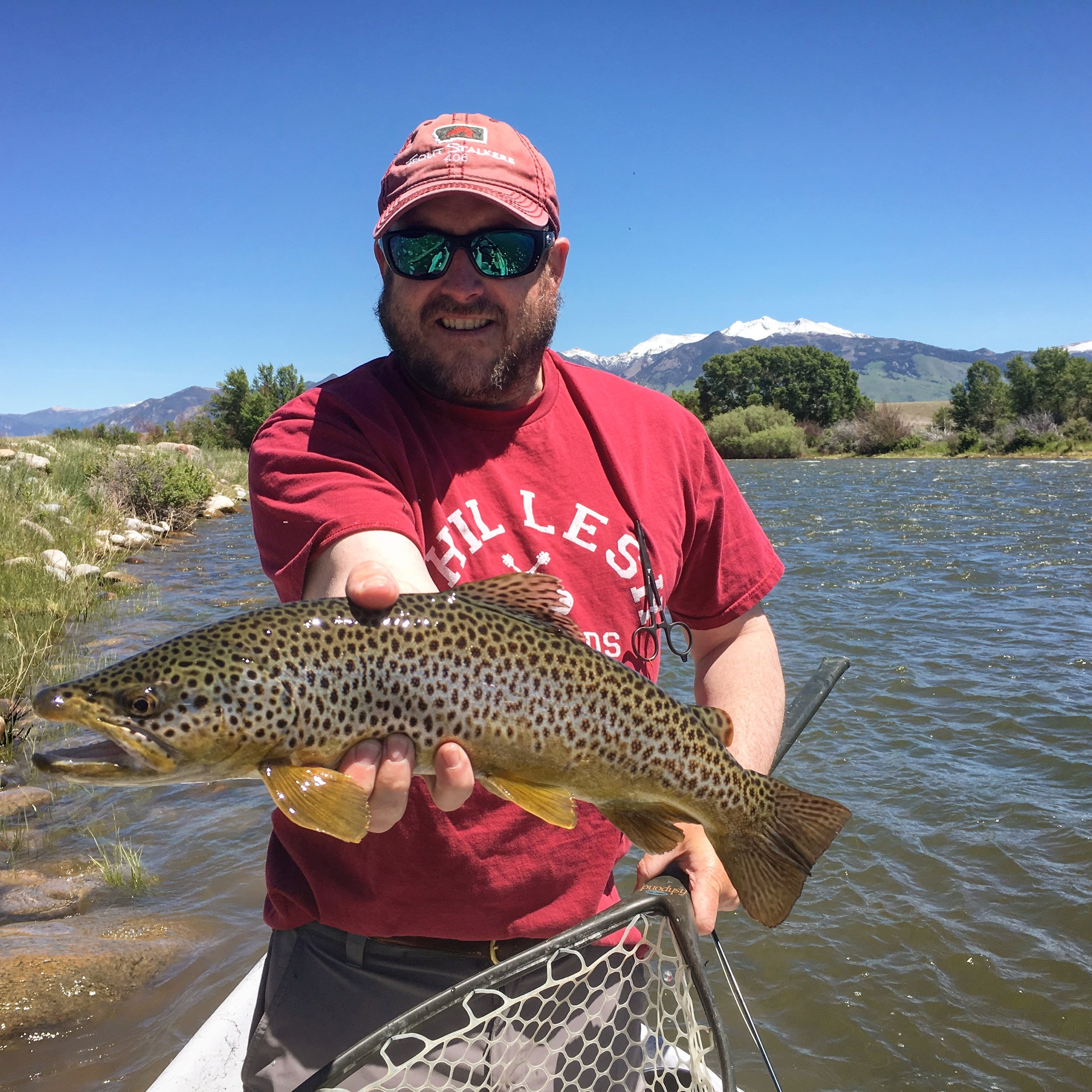 Nice Madison River Brown Trout