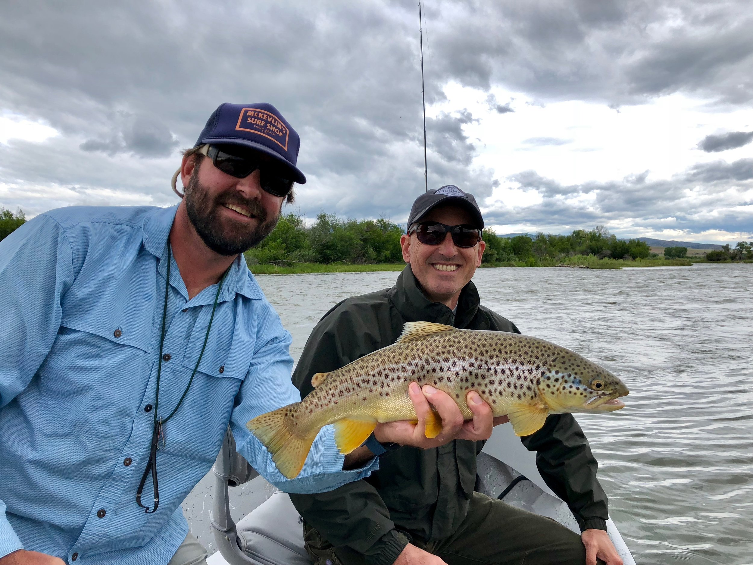 Madison River Brown Trout