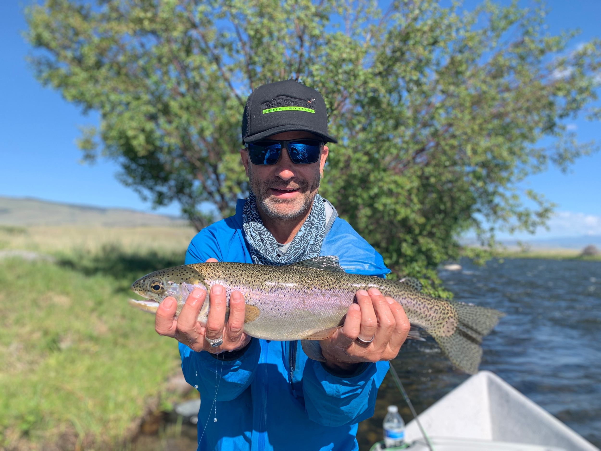 Madison River Rainbow Trout on a small dry fly