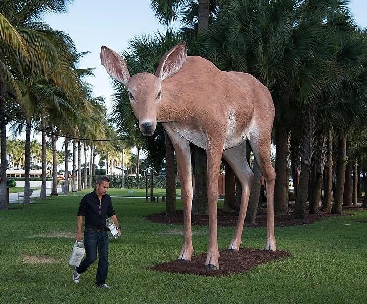 Tony Tasset,  Deer,  2015, exhibited at Collins Park