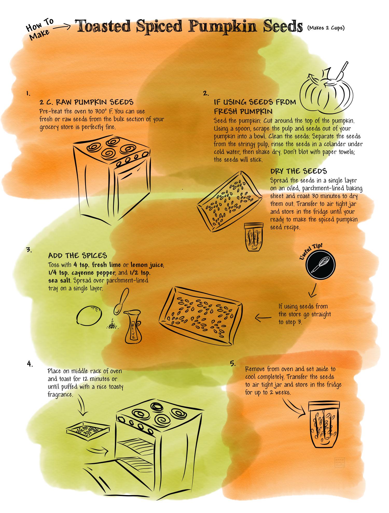 toasted-spiced-pumpkin-seeds-illu.jgp