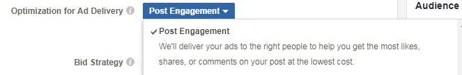 Facebook engagement bidding.JPG