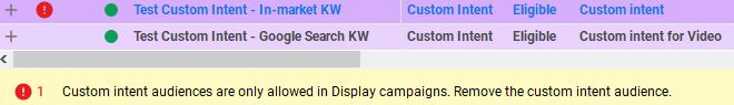 Success! The Custom Intent - Google Search KW audience went through.