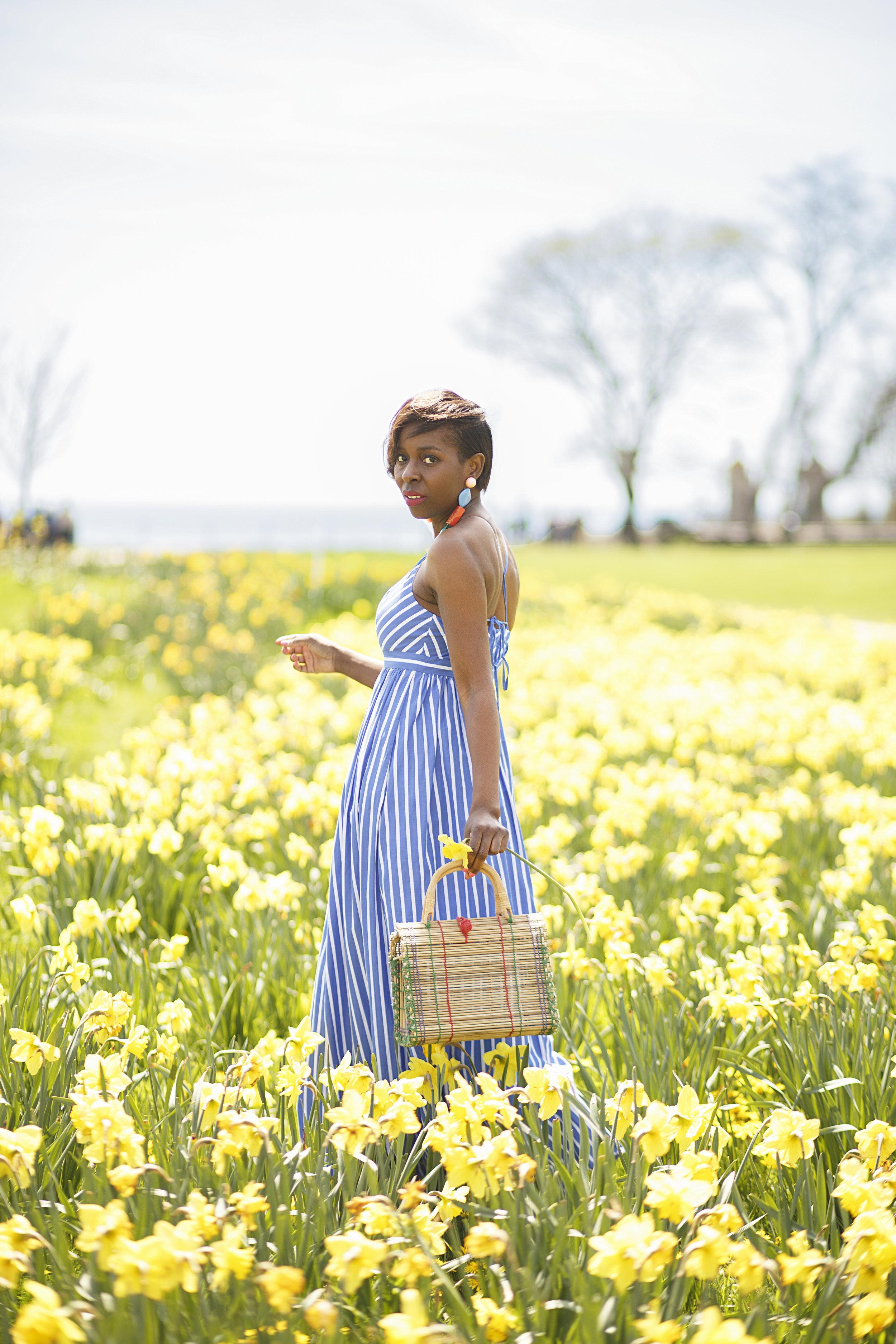 JCrew Stripe Dress, Tulip field photoshoot