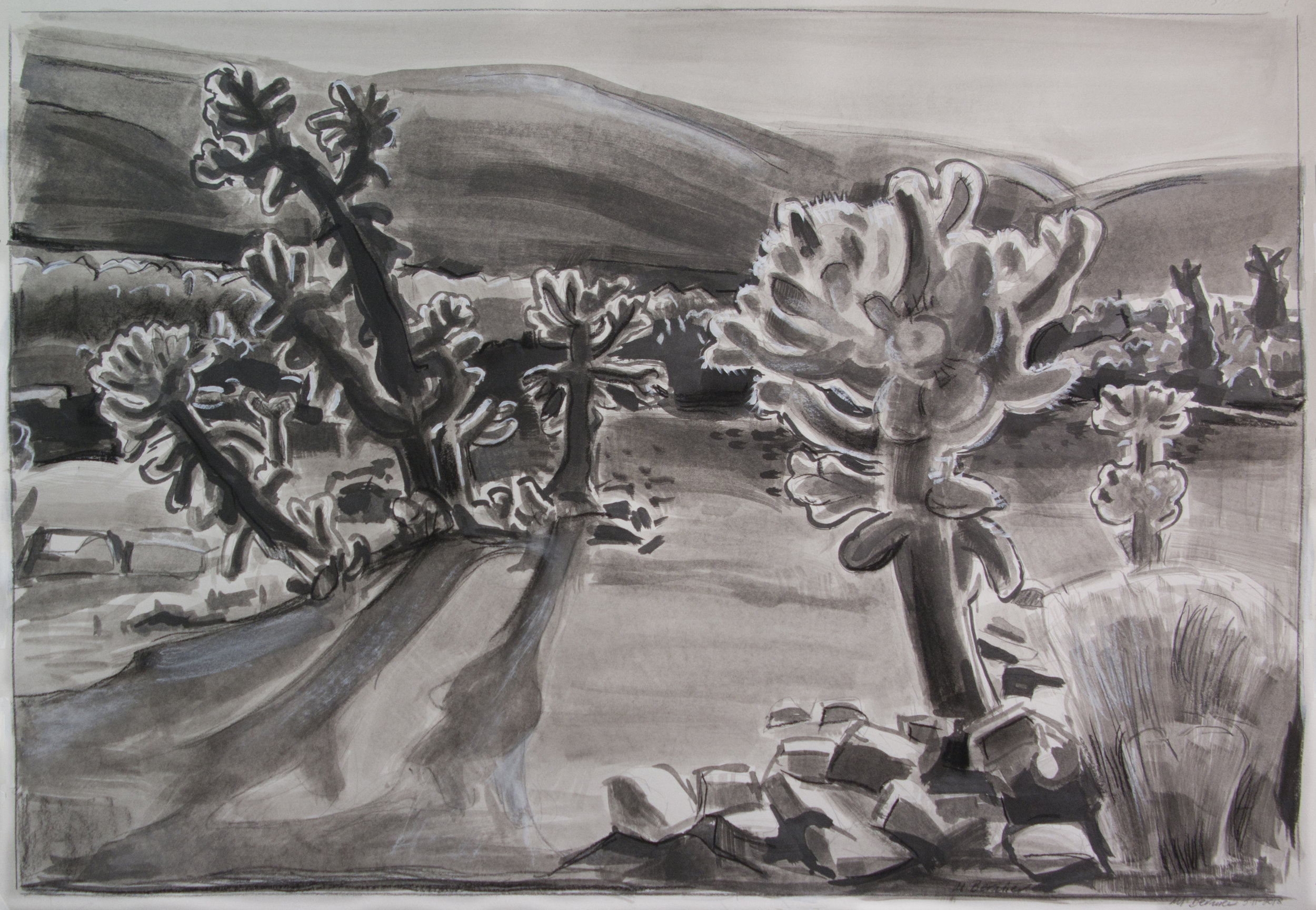 Cholla Garden ( Joshua Tree National Park) ,  ink, 20 x 28, 2018