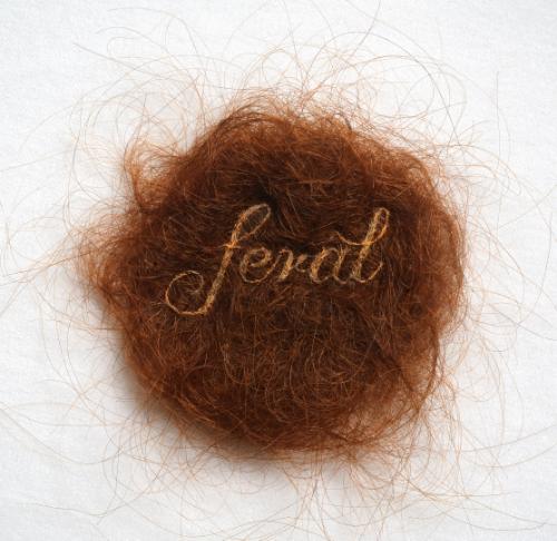 """""""Feral"""" (detail), human hair embroidery on hair, velvet, convex glass, frame, 3"""" x 3"""", 11"""" x 11"""" framed. Image via Kate Kretz"""