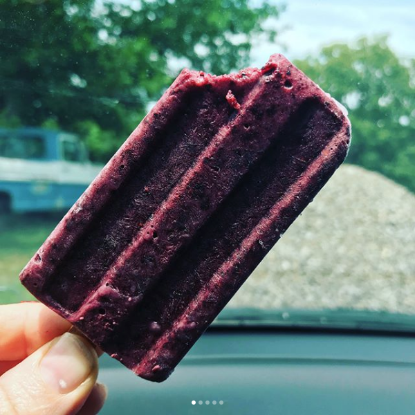 Vegan Blueberry cream pops! Flavors change weekly!  photo credit Leslie Walton