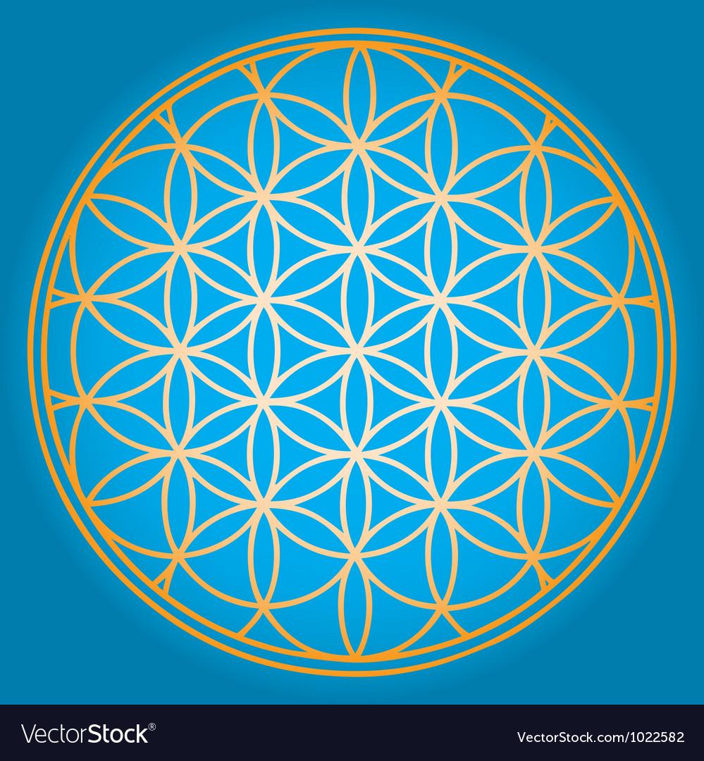 sacred-geometry-flower-of-life-vector-1022582.jpg