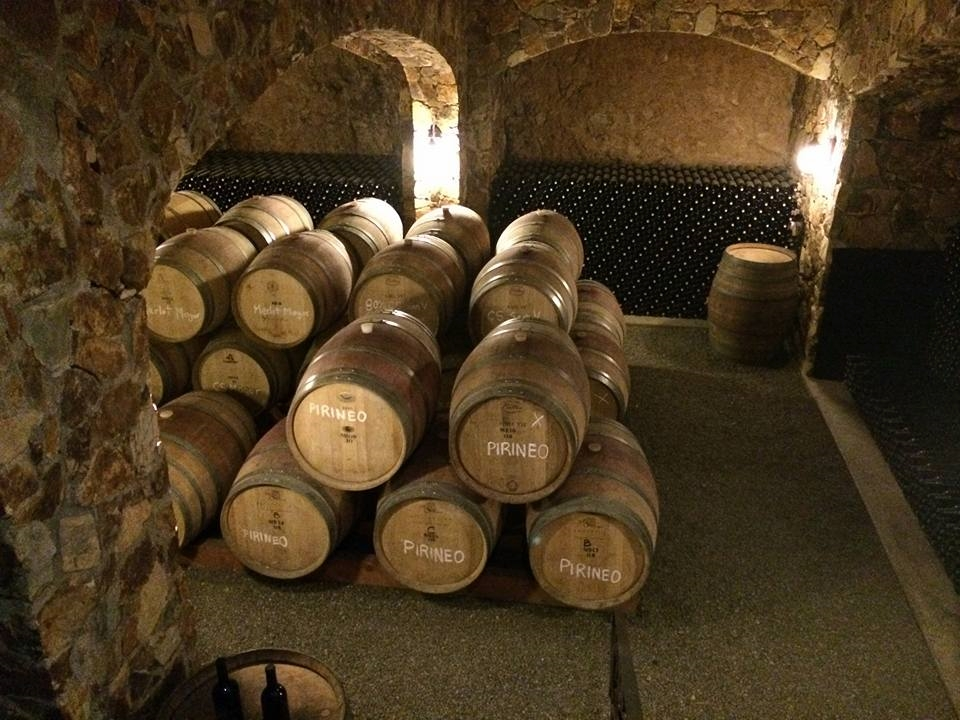 Most wineries offer a tour of their facilities included with the tastings or  degustacion  in spanish