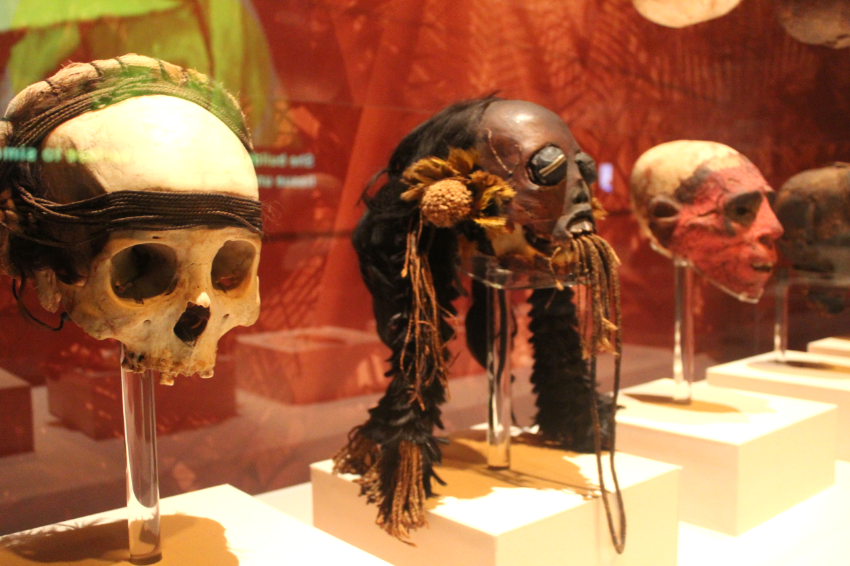 Mummies of the World (C) Cleverly Catheryn