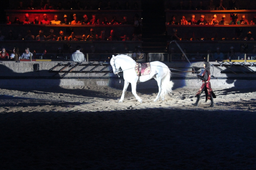 Medieval Times Dinner and Tournament Buena Park (c) Cleverly Catheryn