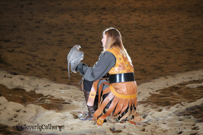 A Falconer and her royal falcon, just one of the many facets of this show.