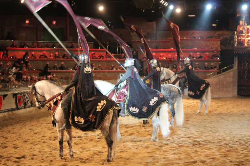 Medieval Times Buena Park (c) Cleverly catheryn