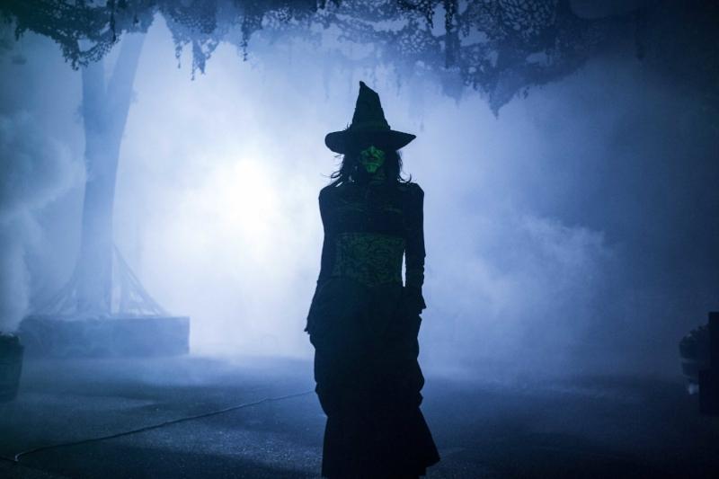 Witch Photo Jpeg.jpg