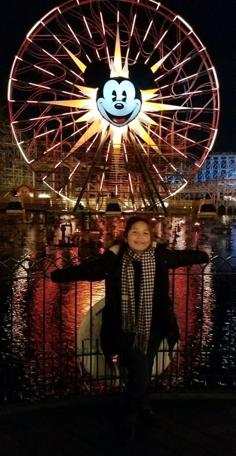 Mickey's Fun Wheel -Nighttime at DCA offers a whole new take on the park!