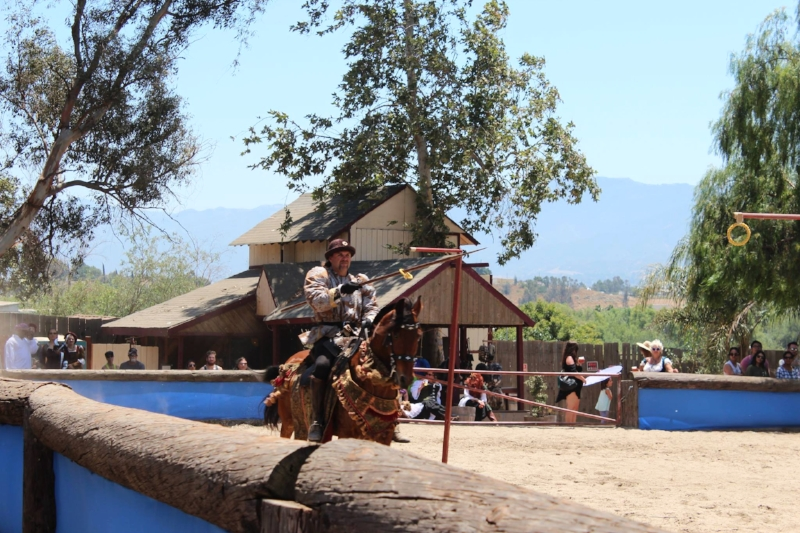 Jousting tournament and games
