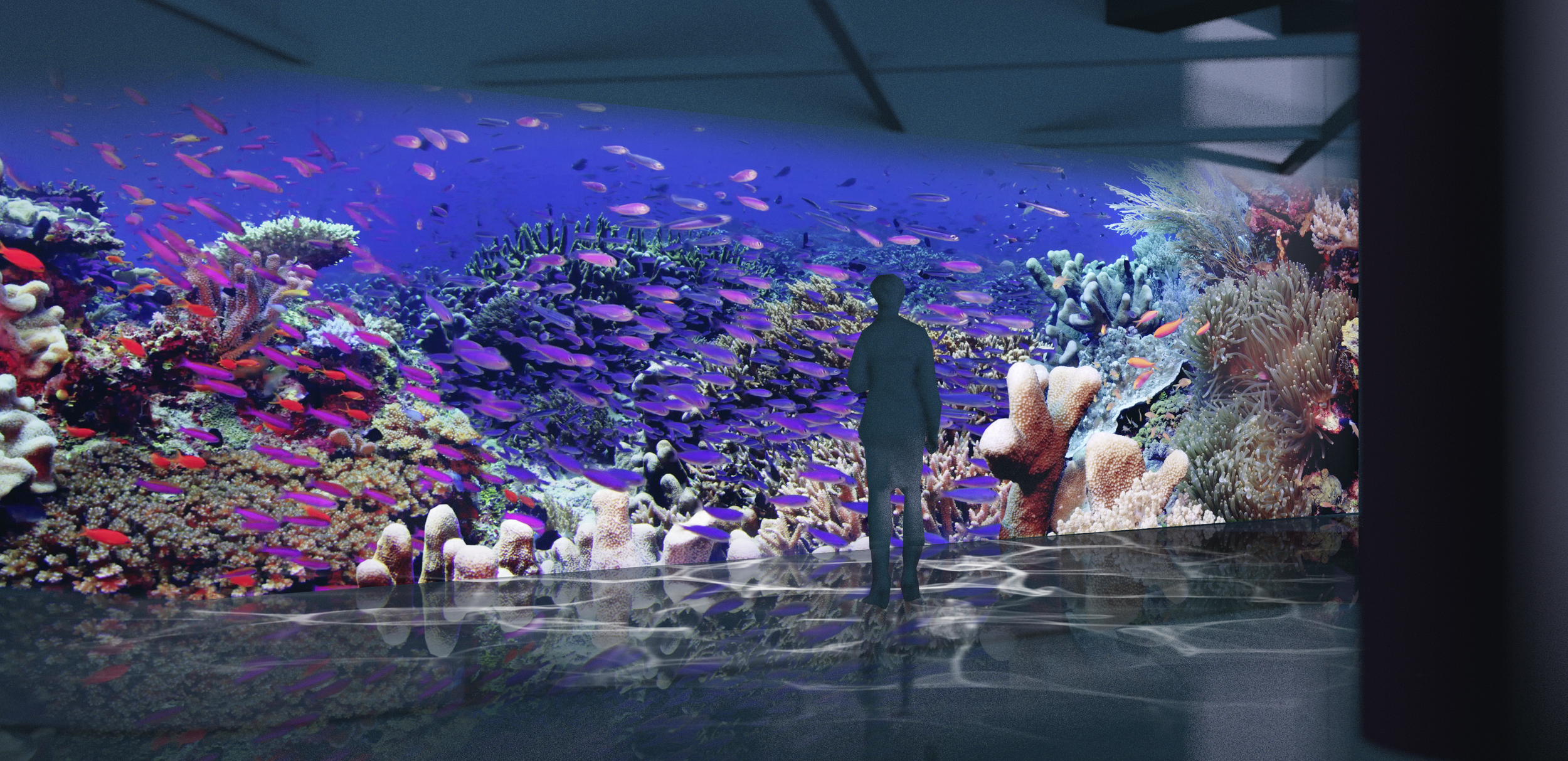 Artist Rendering Pacific Visions at The Aquarium of the Pacific