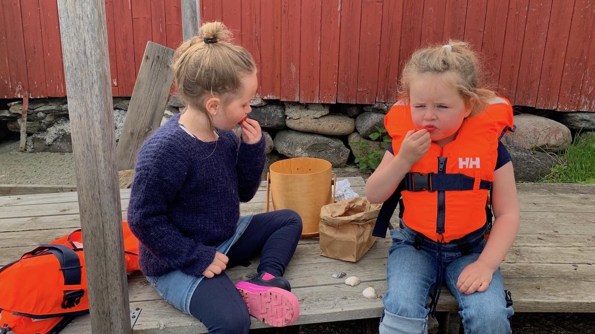 Norske jordbær trenger egentlig ikke noe tilbehør, men hvis du først smaker det med hjemmelaget crumble, kan du fort få en ny favoritt.
