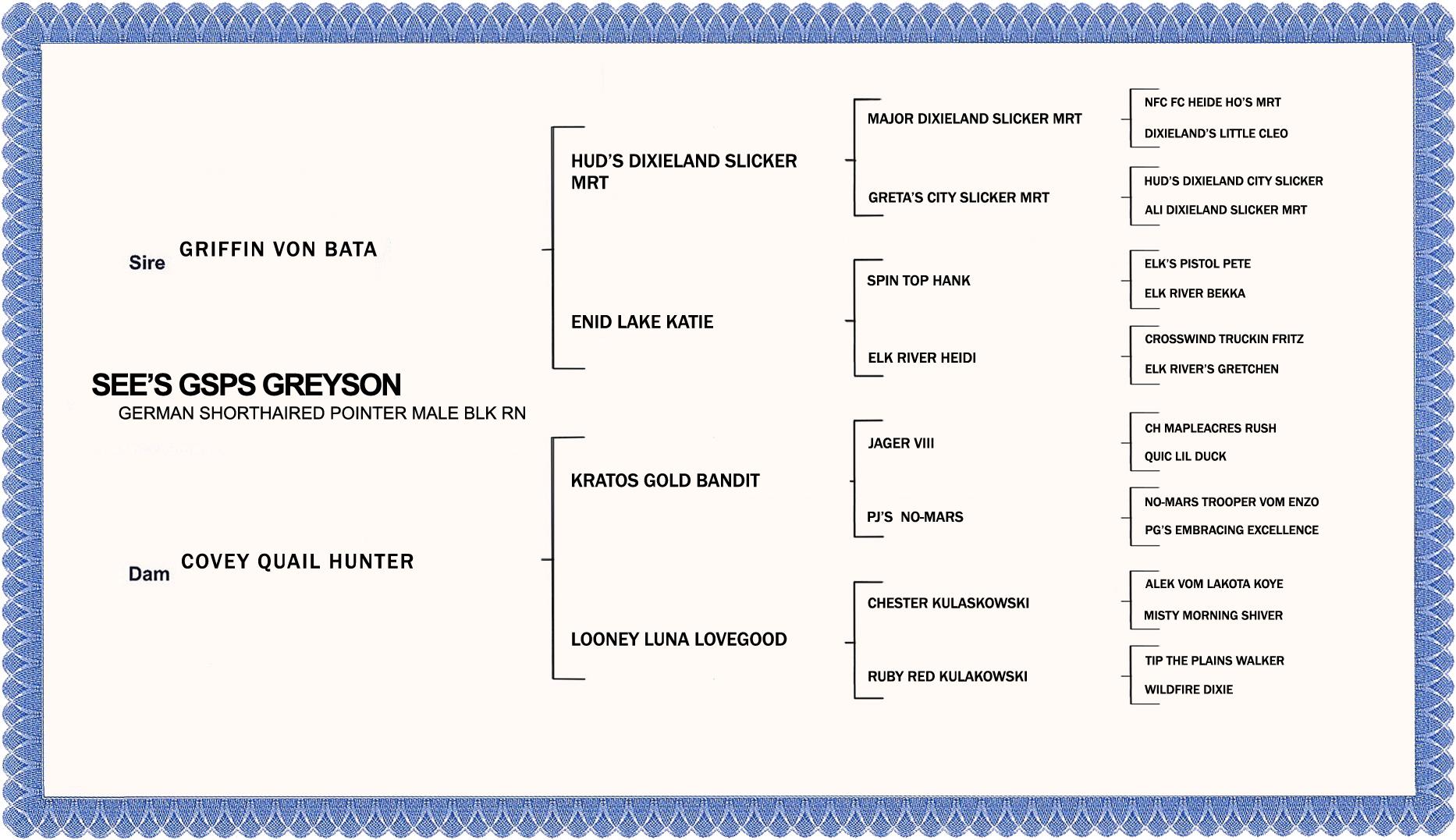PEDIGREE GREYSON-NO NUMBERS-CONDENSED.jpg